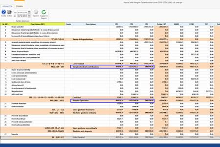 Software Contabilità analitica per Centri di profitto e di costo - Report