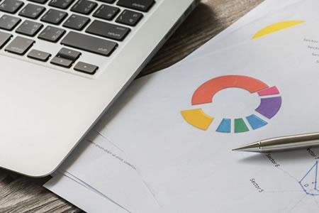 Software Controllo di Gestione - Analisi di bilancio