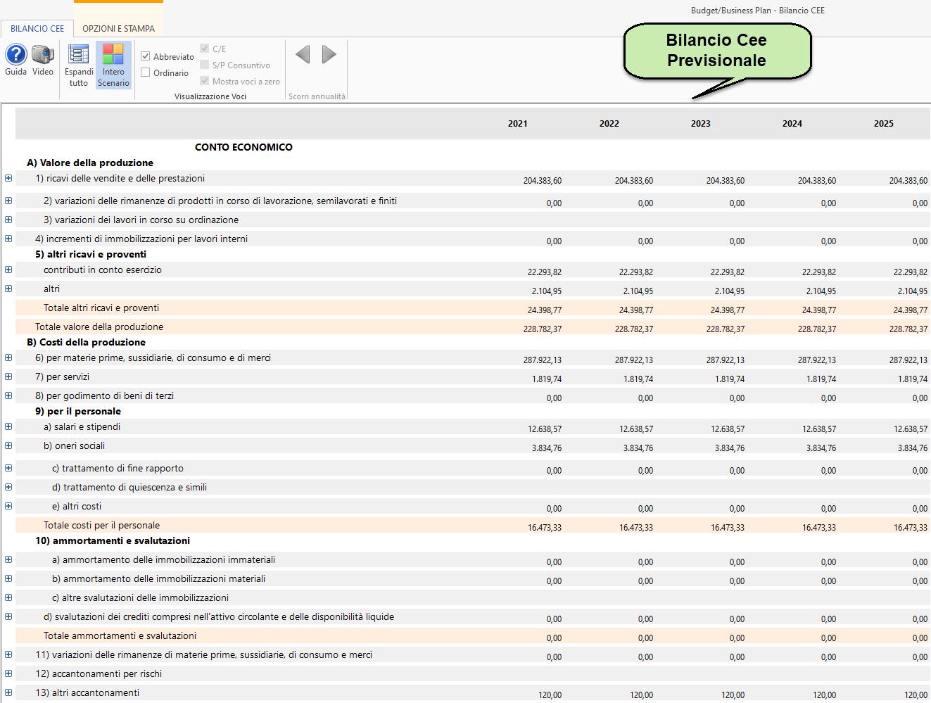 Anticipazioni su Budget e Business Plan in Controllo di Gestione: stampa bilancio cee previsionale