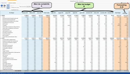 Software Budget aziendale e Business plan - Forecasting